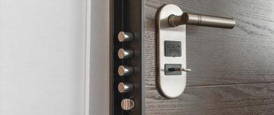 Door Security Systems and Locks