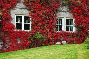 74% say double glazing is a must-have when buying a home